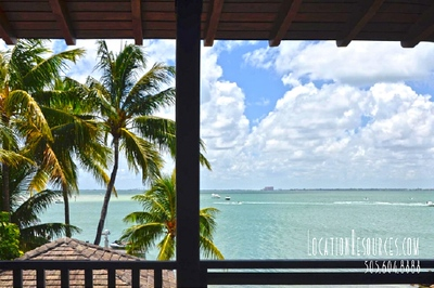 Towering Palms  (Key Biscayne)