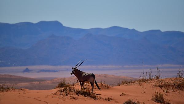 Namibia Road Trip 2016