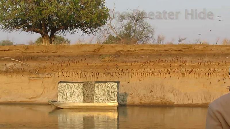 Zambia Kaingo Wildlife Video