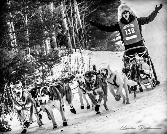 John Beargrease Sled Dog Marathon 2017