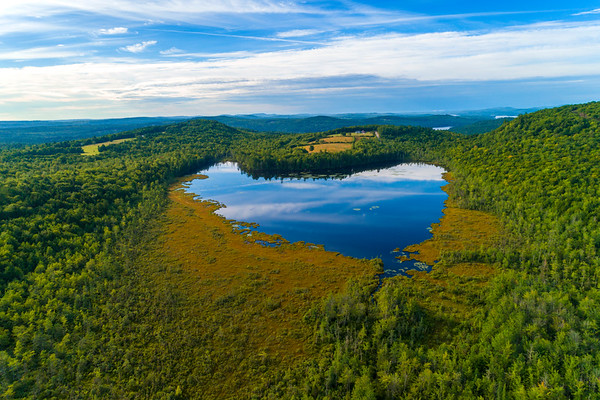 The Heart-Shaped Pond