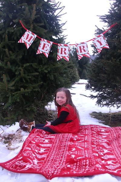 11-25-18 French Christmas Tree Mini