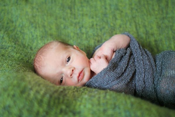 Timmy Dougherty Newborn