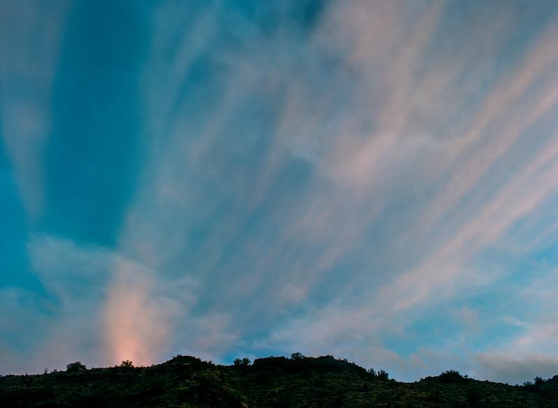 arizona20150310_0071.jpg