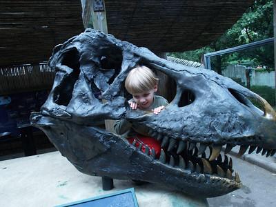 Zoo Visit June 2007