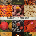 Dynamite-Baits-catalogue-160x225.png