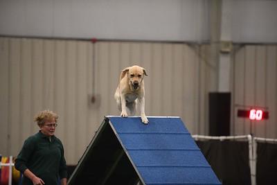 Burlington County Kennel Club AKC Agility Trial October 13-14