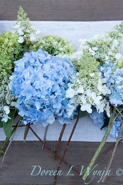 Hydrangeas arrangement on linen_2171.jpg