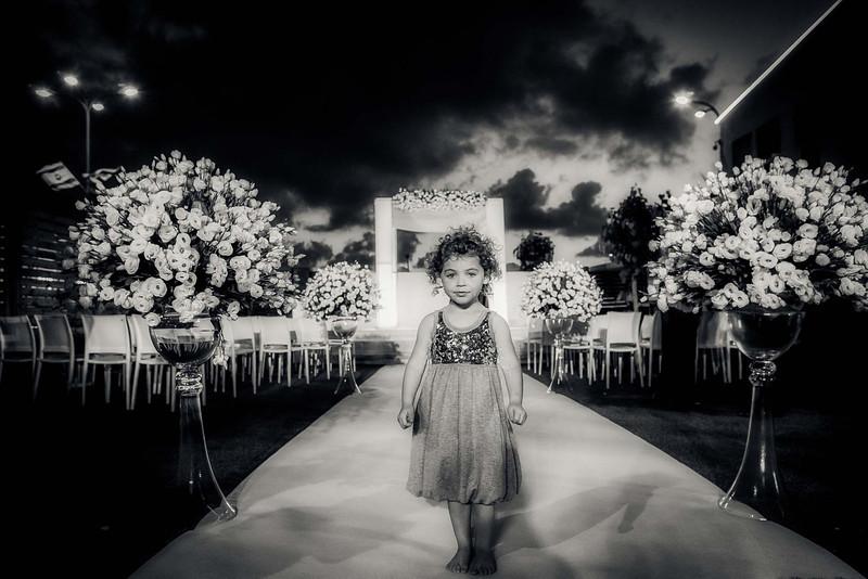 wedding-663-1-Edit-Edit.jpg