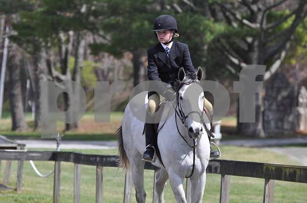 Taylor's Horse Show Photos