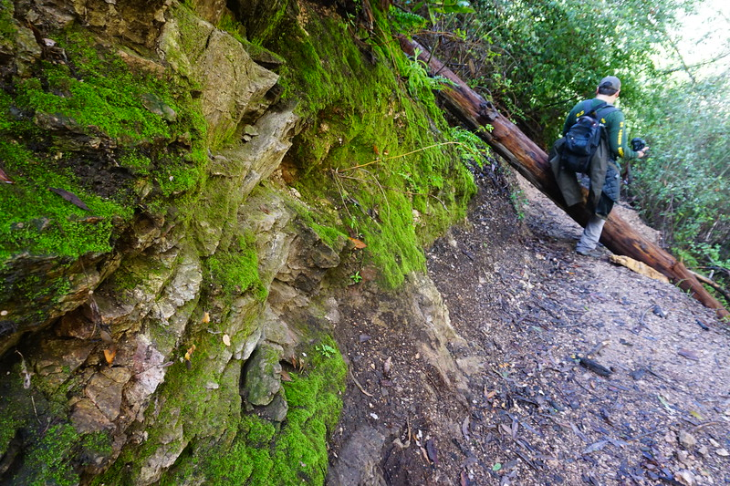 20160218054-Gabrielino Trail Scouting.JPG