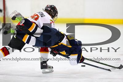 Sabres vs Blue Devils, Squirt 10U 1-22-17