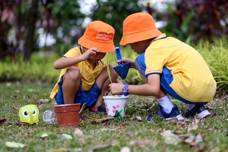 SSBD Gardening-0009.jpg