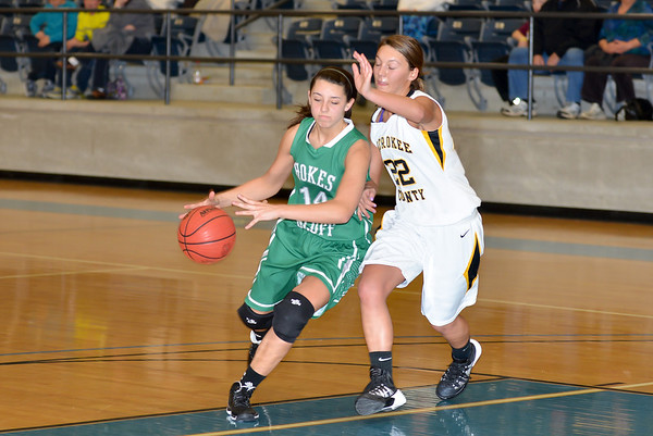 Hokes Bluff v. Cherokee County, January 21, 2014