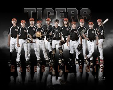 Tigers Baseball 2019