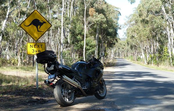 Random motorcycle pics