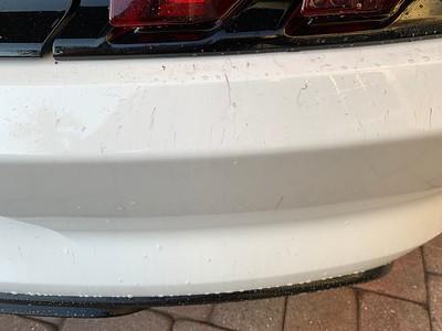 2020 Mustang GT350R