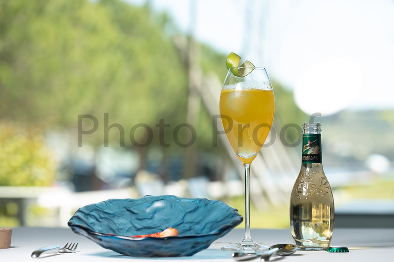 BIRDSONG Schweppes Cocktails 088.jpg