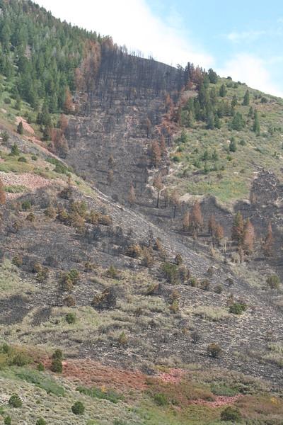 20080909-152 - LaSal Mountain Loop - 19 Fire.JPG