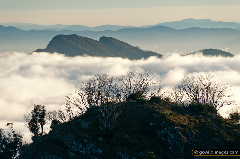 Sunrise looking over Devil's Staircase towards The Razor with Mt Buffalo in the distance