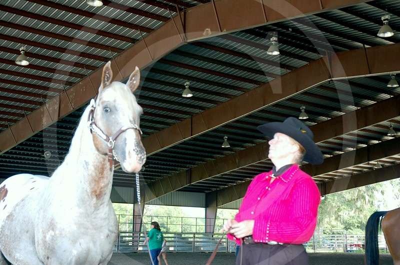 4-H Adult Horse Show