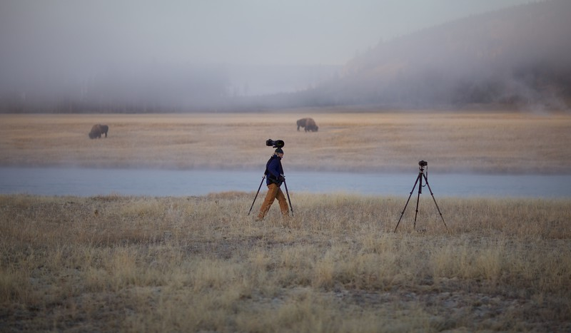 Photographer Ryan and Bison Firehole River Yellowstone N.P. WY IMG_0069964.jpg