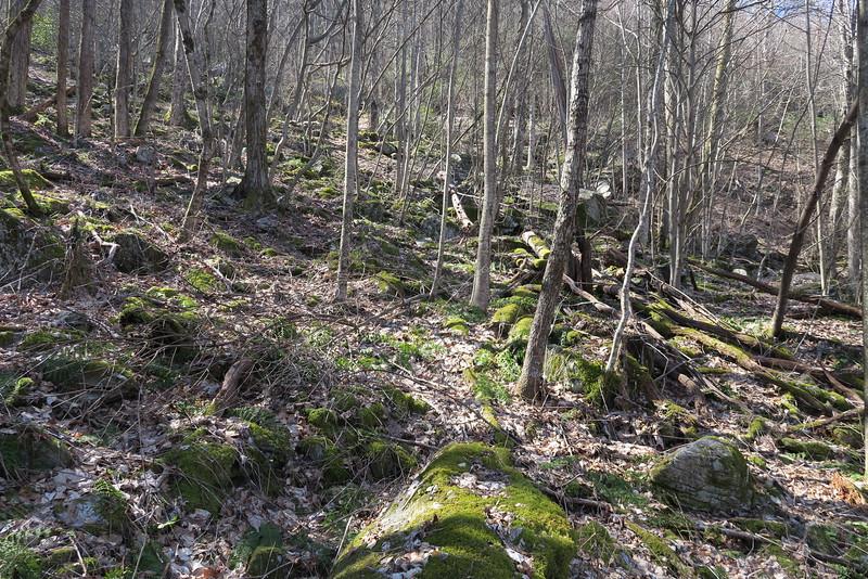 Trombatore Trail - 3,250'