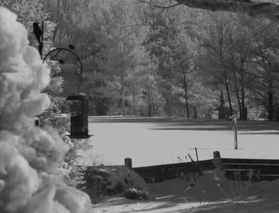 Zionsville Winter 10