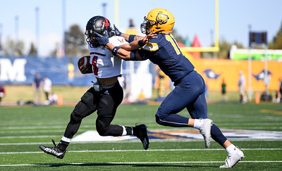Photos: Northern Colorado Bears fall to Eastern Washington Eagles 63-17 in homecoming game at Nottingham Field
