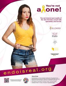 Endo Posters 2017 - English