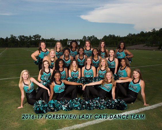 2016-17 Forestview