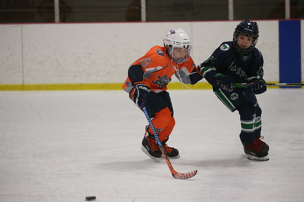Squirt AA - Flint Firebirds