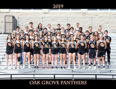 2019 OGHS Track & Field