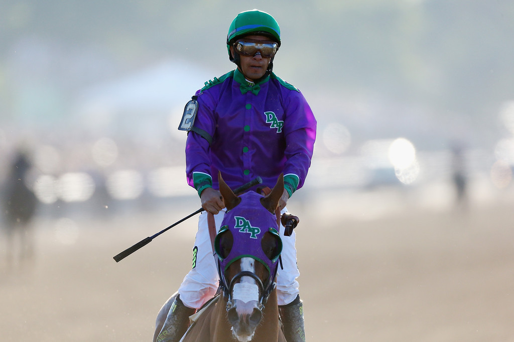 . ELMONT, NY - JUNE 07:  California Chrome #2, ridden by Victor Espinoza, walks down the track after losing the 146th running of the Belmont Stakes at Belmont Park on June 7, 2014 in Elmont, New York.  (Photo by Streeter Lecka/Getty Images)