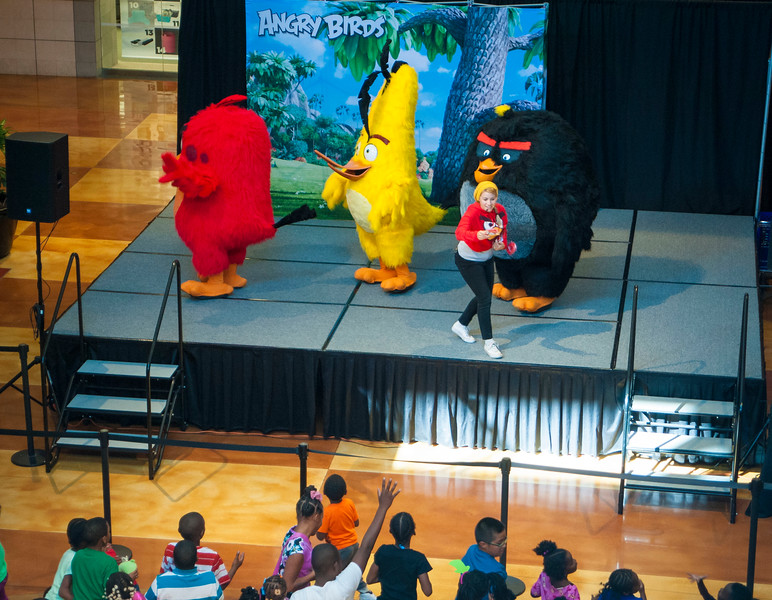 Angry Birds StoneCrest Mall 188.jpg