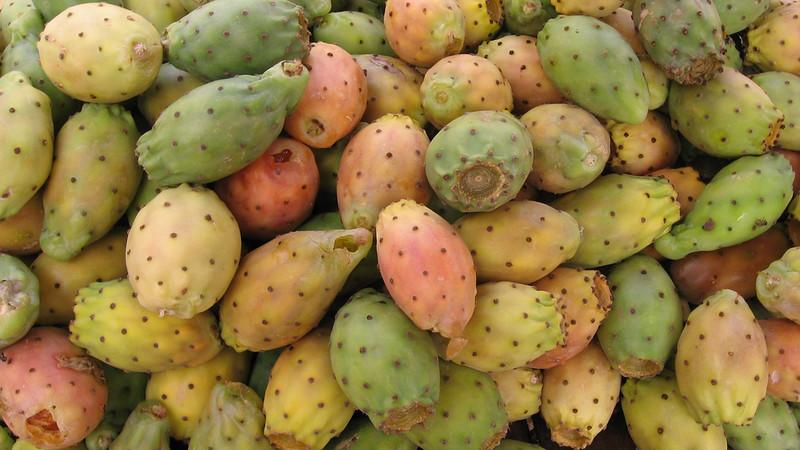 Cactus Pear (English)