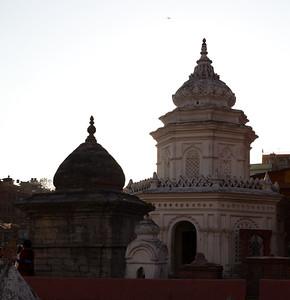Day 5 - Pashupathinath temple