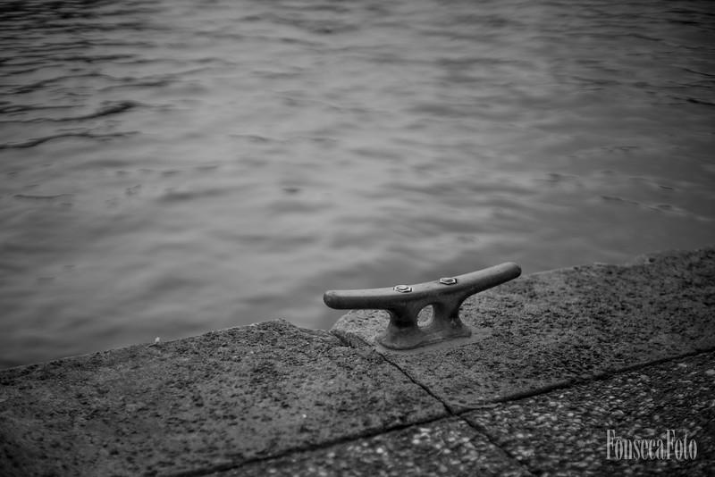 fonsecafoto-50mm12FDL-0169.jpg