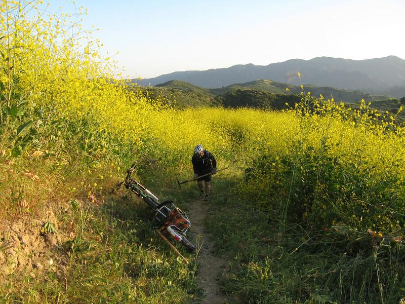 20080417011-New Millenium Trail, trailwork.JPG