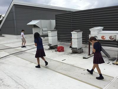 2C Green Roof Visit