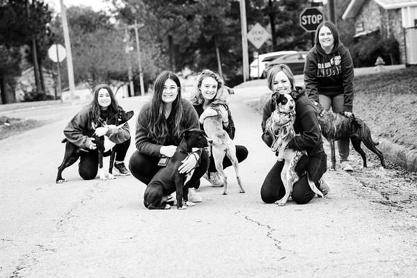 Erin Vaughn's 8am Class Walking Shelter Dogs