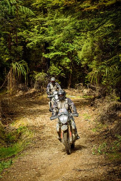 2019 KTM New Zealand Adventure Rallye (1298).jpg