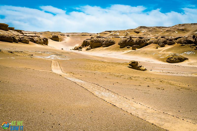 Wadi-El-Hitaan-02453.jpg
