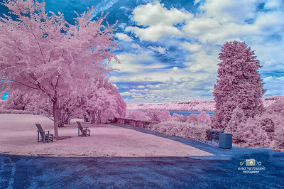 IR  PHOTOGRAPHY #1