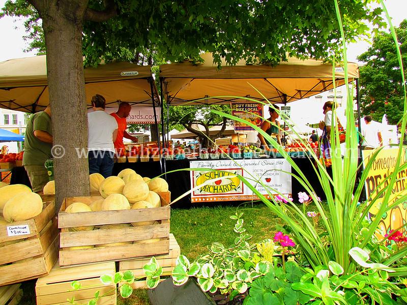 Easton Farmers Market, Easton, PA  8/11/2012