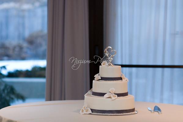 Cake Cutting - Cosette and Jason