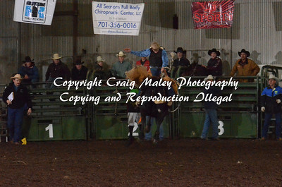 Saddle Bronc 04-27-14
