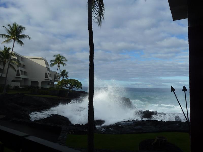 Hawaii 2017 195.JPG