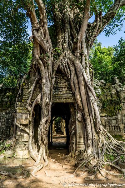 angkor-wat-siem-reap-ruins-1.jpg