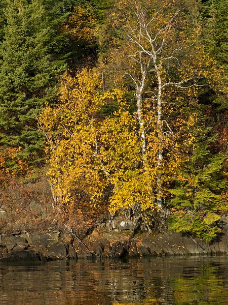 lake12539.jpg